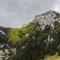 Northern Velebit National Park - Parco Nazionale del Velebit Settentrionale